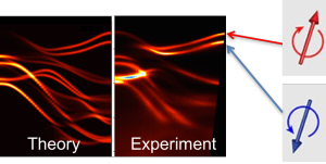 The top band in tungsten diselenide's band structure is split, showing that these electrons have opposite spin values.