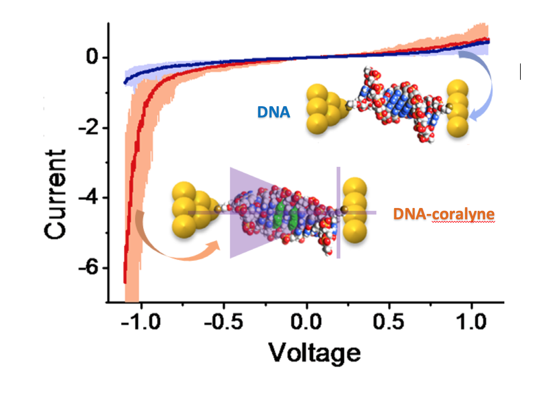 Building Molecular Circuits With Dna Funsizephysics Direction Of Current In A Circuit 3 While The Through Original Molecule Stays Essentially Same Regardless