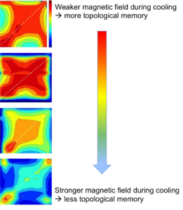 This figure shows a selection of correlation maps measured in different cooling conditions. Each map shows the amount of magnetic domain memory throughout the magnetization process, with the color red being high and color blue being low. What changes from the top map to the bottom map is the strength of the magnetic field during cooling. This shows the gradual loss of magnetic memory as the magnitude of the cooling field is increased.
