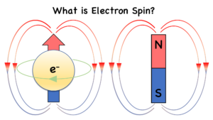 An electron's spin creates a magnetic moment, so it behaves like a tiny magnet.