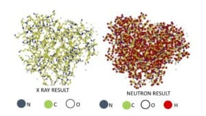 Compare these two images of myoglobin, a biological protein that provides oxygen to muscles. The image on the right, produced by neutron scattering, shows all the hydrogen atoms in the molecular structure. These hydrogen atoms are missing from the image on the left, obtained from x-ray scattering, because x-rays interact very weakly with and are therefore unable to